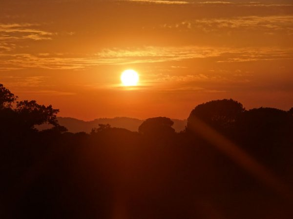 Coucher de soleil RNN